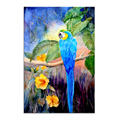 1 Piece Wall Art Watercolor Blue Parrot Illustration Canvas Prints Flower Canvas Painting Bird Picture for Room Decor/ SJMT1990