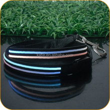 Multi Color Flashing Electric Pet Supplies LED Dog Leads with Battery Inside