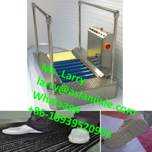 automatic shoe cleaner/sole washing machine/shoe sole cleaning machine