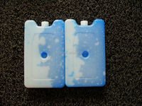 400ml PE material mini blue ice cube ice cooler box maker