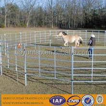horse paddock fence/goat & sheep panels/Welded Metal rails Cattle fence