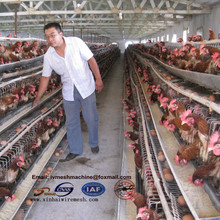 Kenya chicken farm equipment: galvanized layer chicken cage