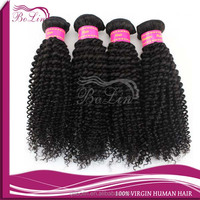 wanted distributorship Most Popular Curly Brazilian Virgin Hair
