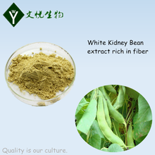 White kidney bean extract powder for weight lossing