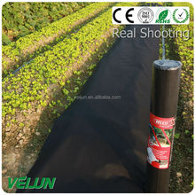 pp nonwoven fabric is widely used in agriculture without any chemical polution