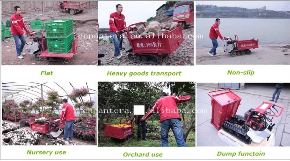 2016 New Style CE Popular Hot Cheap Garden Mini Dumper.jpg