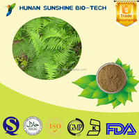 Alibaba China 10:1 Phoenix-tail fern extract