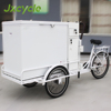 250w Motor With Cargo Tricycle 3 Wheel Electric Ice Cream Bike for Cola Selling Cool Ice Cream Trike