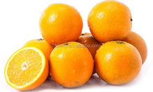 2017 Good price Citrus fruit fresh Valencia Orange