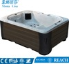 Brand New Design 5 Person Leisure Home Spa Hot Tub Spas For Sale