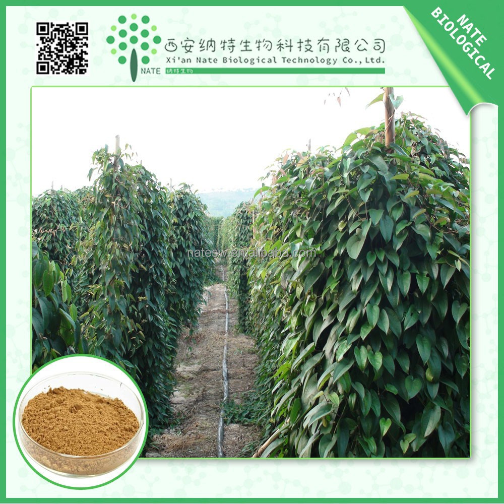 Factory supplier Wild Yam ROOT Extract powder diosgenin 10:1 natural free sample