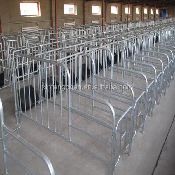 pig farming floor equipment