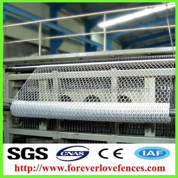 (Anping Manufacturer)Chicken Fencing Duck Fencing Mesh(Chicken/Rabbit/Poultry Hex Wire)