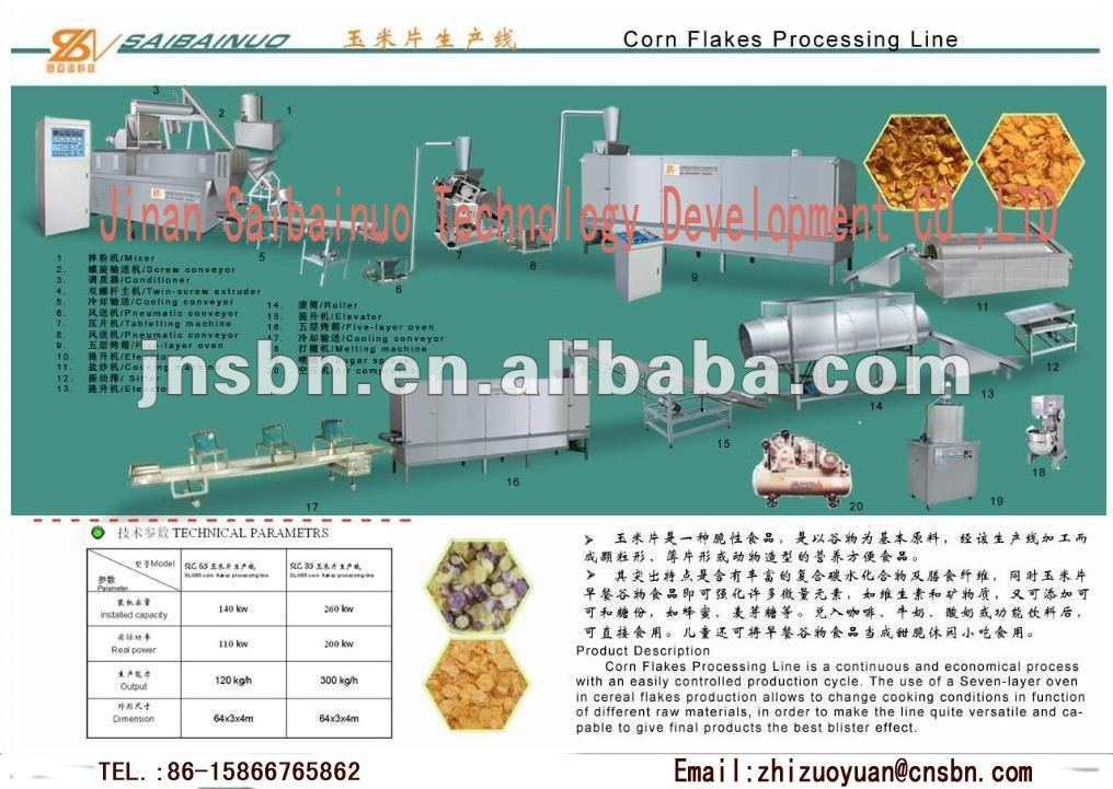 High Yield Rice Flakes Machine/Equipment/Processing Line
