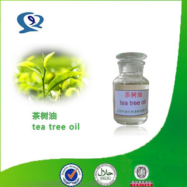 Tea tree oil bulk prices