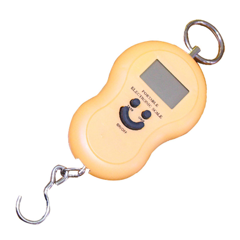 Hand Held Electric Hanging Weighing Scale 40Kg