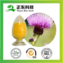 Factory supply yellow fine powder 80% silymarin Milk Thistle Extract