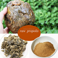 High quality propolis type products no heavy metal no pollution forest collect green natural raw propolis