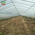 Agriculture use plastic / pc sheet / glass cover greenhouse equipment for sale