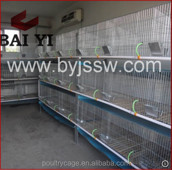 Baiyi Manufacturer Rabbit Cage/Kennel/Hutch With Great Design