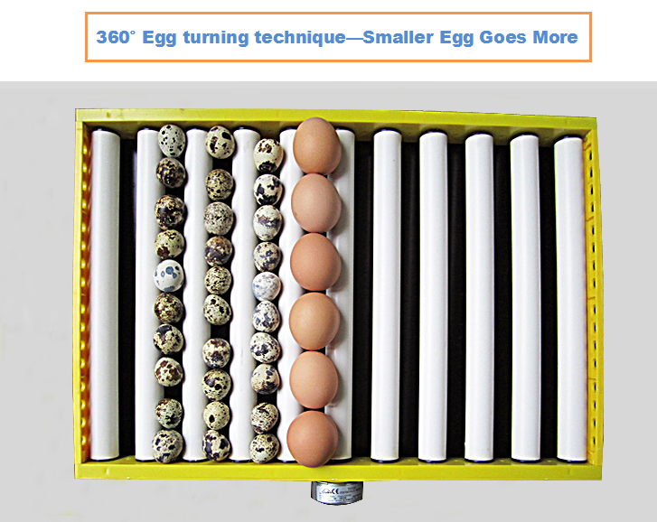 FRD-180 easy operation power saving homeuse chicken eggs incubator