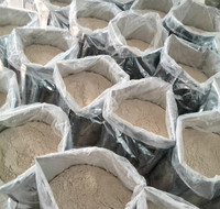 ISO HACCP 2015 crops Chinese Powder Shape and AD Drying Process garlic powder
