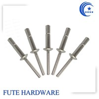 Domed head closed end Multi-grip Rivet from China suppliers