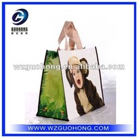 hot sale cheap price pictures printing non woven shopping bag
