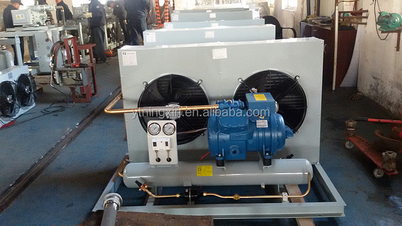 Small Freezer room Mini frascold condensing unit prices
