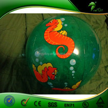 The Coolest Green beach ball,standard size beach ball with sea dragon printed