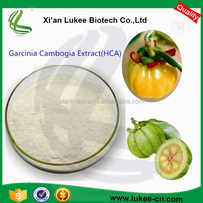 The supply of natural diet of raw materials garcinia cambogia extract spot, hydroxy citric acid HCA50%
