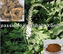 Hot sales Natural Black Cohosh extract