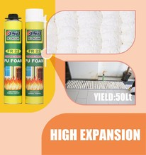 Multi-purpose Spray Pu Foam for Window and Door