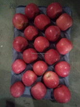 All the year Supply 2016 Yantai red Fuji Apple / Chinese apple / China Fresh Apple