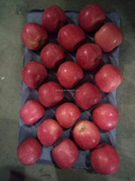All the year Supply Yantai Fuji Apple / chinese apple / Fresh Apple