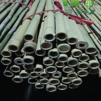 Wy Si237 Dry Raw Bamboo Pole