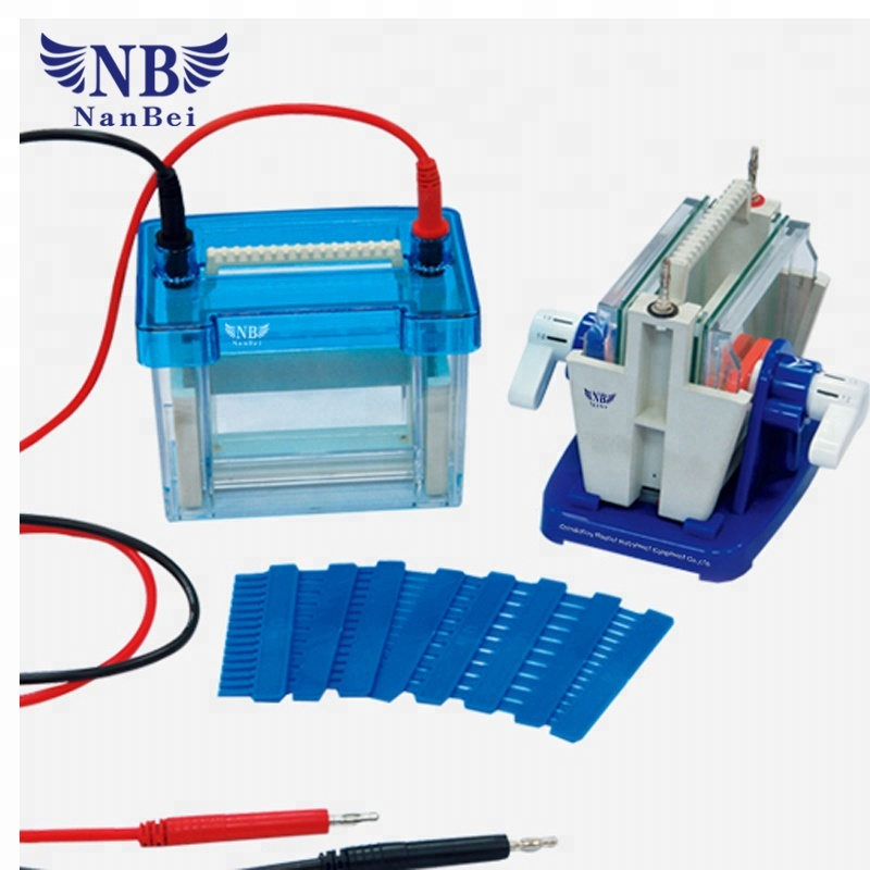 Automatic DNA sequencing gel electrophoresis system with best quality