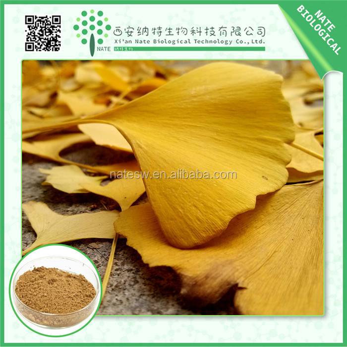 High Quality Ginkgo Biloba Extract 24/6 and Terpene Lactones 6% Ginkgo Biloba Leaf P.E. from Chinese super manufacyure