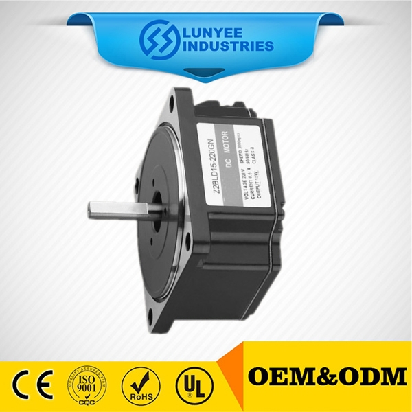 15w reverseable brushless dc motor