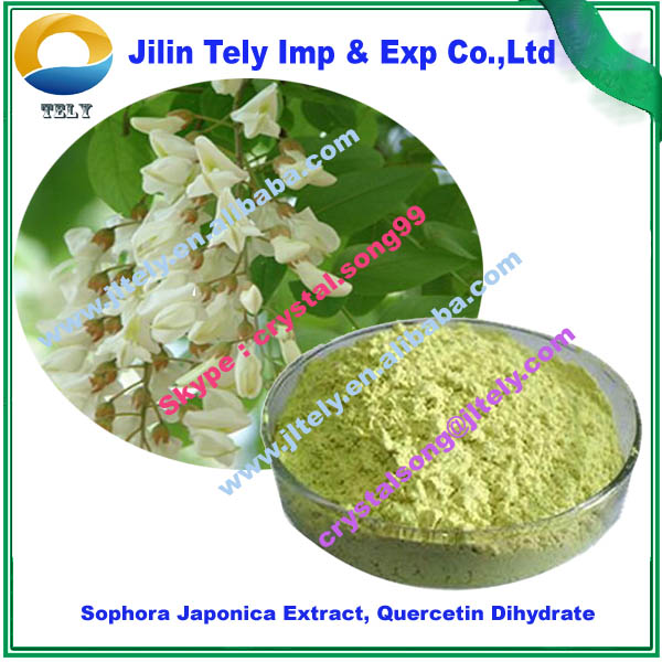 Sophora Japonica Extract, Quercetin Dihydrate Factory Supply