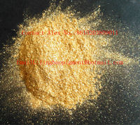 Mica gold pearl pigments powder for paints