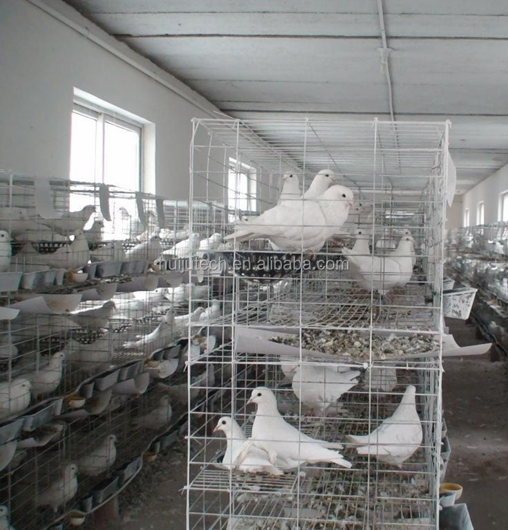 top sale 4 layer stainless steel pigeon breeding cage for sale