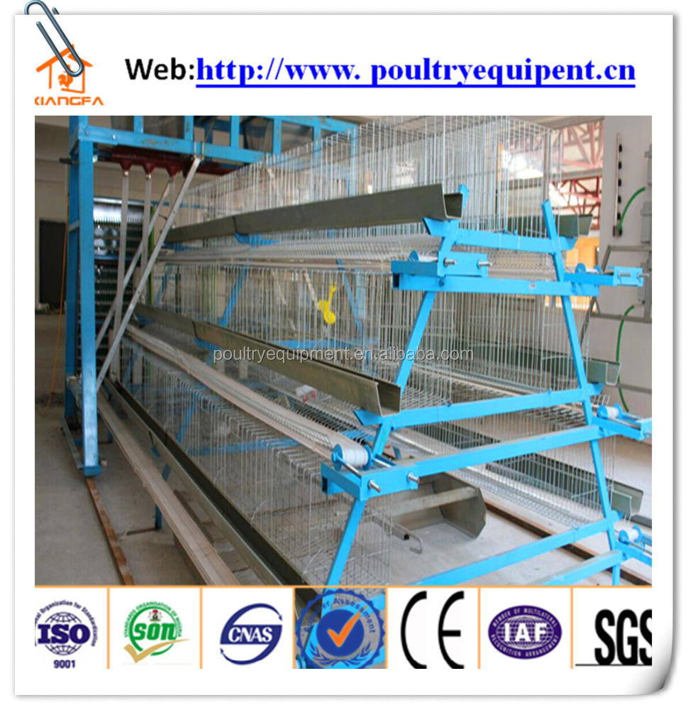 chicken farm south africa egg layer cages