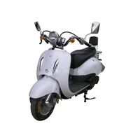 Ce Approved Cheap Price Mini Adult Electric Motorcycle