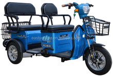 500W electric 3 wheels 2 to 3 persons leisure tricycle