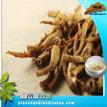 Nutrition Supplement dried red ginseng powder buyers best sell