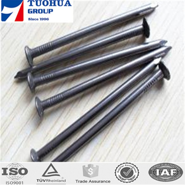 Galvanized Stainless Concrete Nail/Concrete Steel Nail/common nails