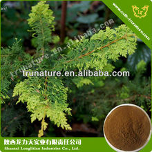 Natural amur cork tree bark extract