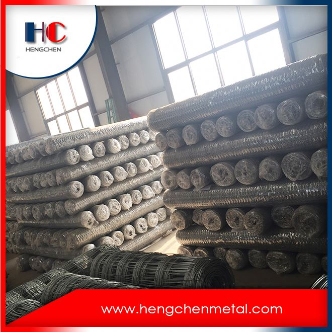 China galvanized hexagonal wire mesh factory