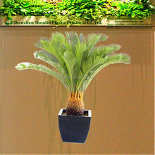 plastic cycas bonsai plants